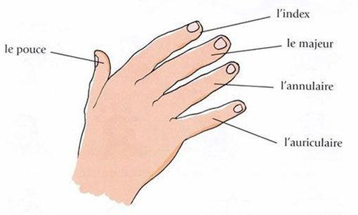 Les bagues aux doigts signification